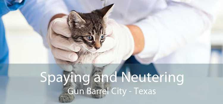Spaying and Neutering Gun Barrel City - Texas