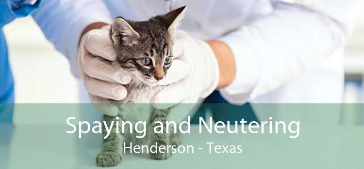 Spaying and Neutering Henderson - Texas