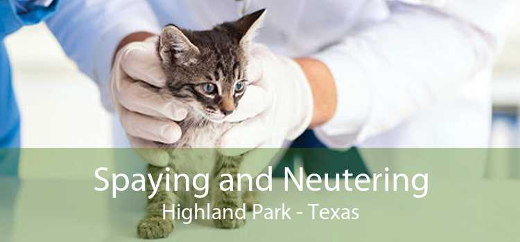 Spaying and Neutering Highland Park - Texas