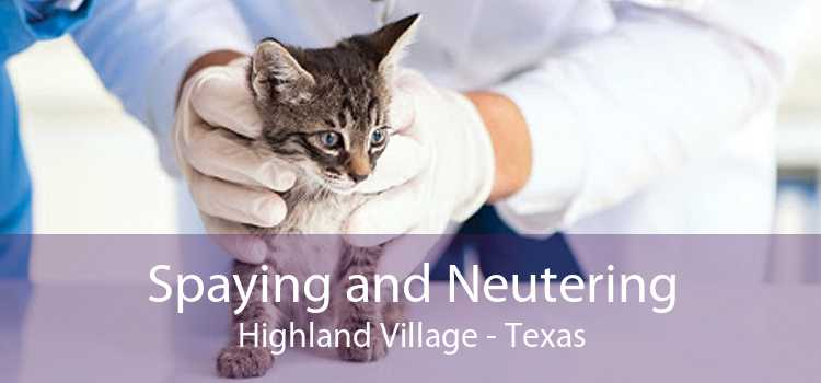 Spaying and Neutering Highland Village - Texas
