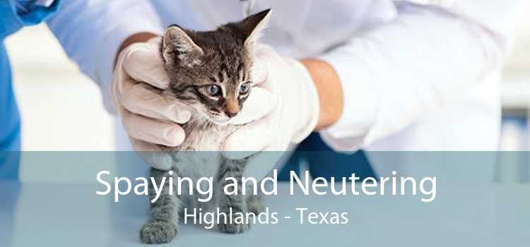 Spaying and Neutering Highlands - Texas