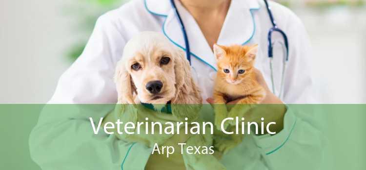 Veterinarian Clinic Arp Texas