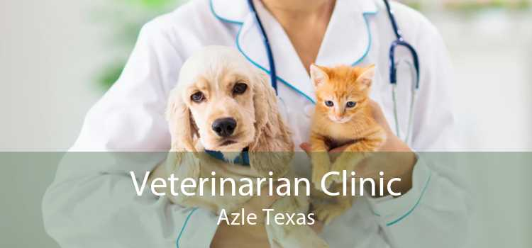 Veterinarian Clinic Azle Texas