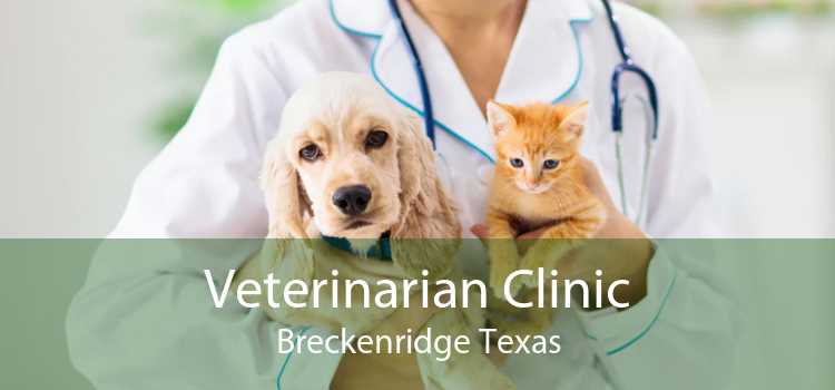 Veterinarian Clinic Breckenridge Texas