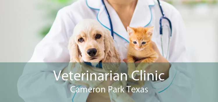 Veterinarian Clinic Cameron Park Texas