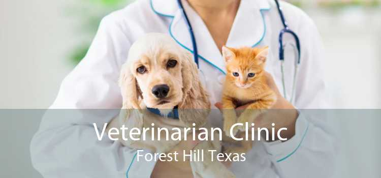 Veterinarian Clinic Forest Hill Texas
