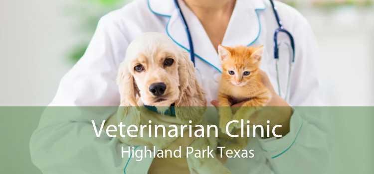 Veterinarian Clinic Highland Park Texas